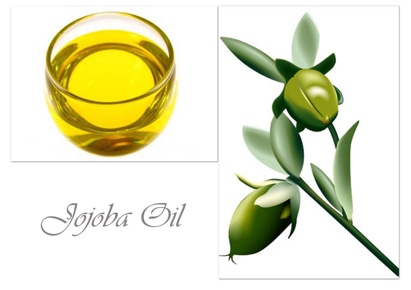 Ingredient Spotlight: Jojoba Oil | Askanesthetician's Blog